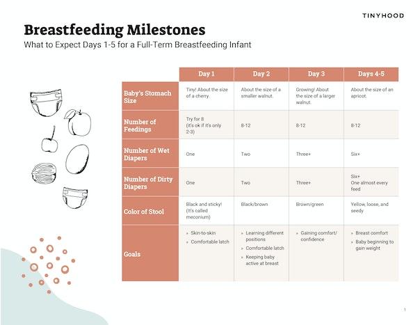 Breastfeeding Milestones Preview Image