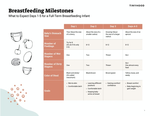 Breastfeeding Milestones Preview Image