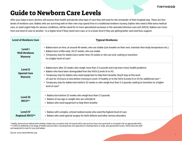 Newborn Care Levels Preview Image