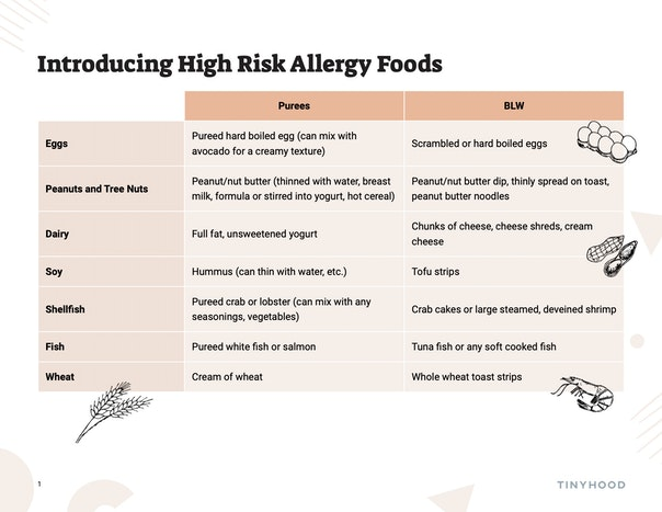 Introducing High Risk Allergy Foods Preview Image