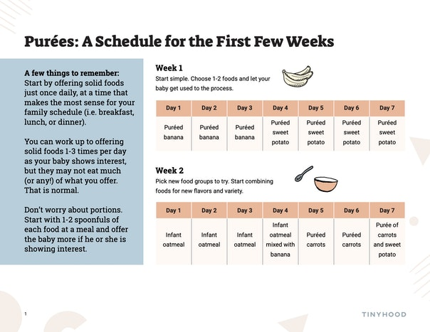 Purees Schedule for the First Few Weeks Preview Image