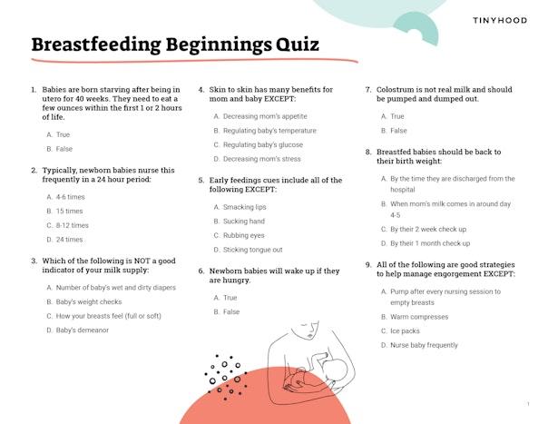 Breastfeeding Beginnings Quiz Preview Image