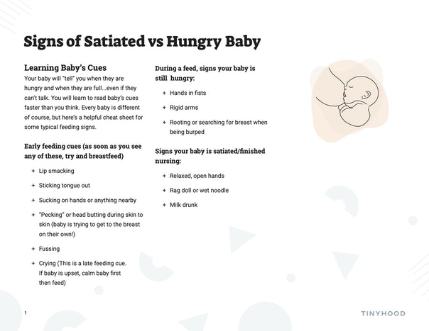 Signs of a Satiated vs Hungry Baby Preview Image