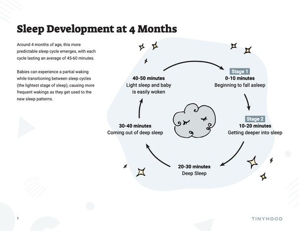 Sleep Development at 4-Months Preview Image