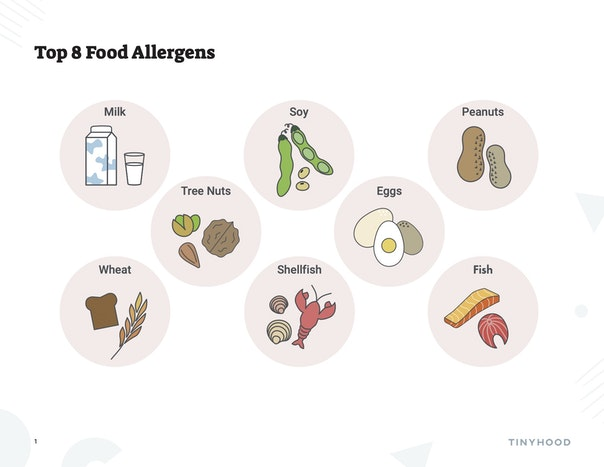 Top 8 Food Allergens Preview Image