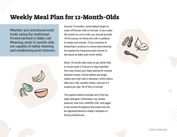 Weekly Meal Plan for 12 Month Olds Preview Image